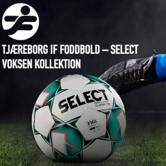 Tjæreborg IF Fodbold - Voksen